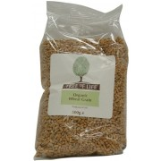 Organic Wheat - Grain